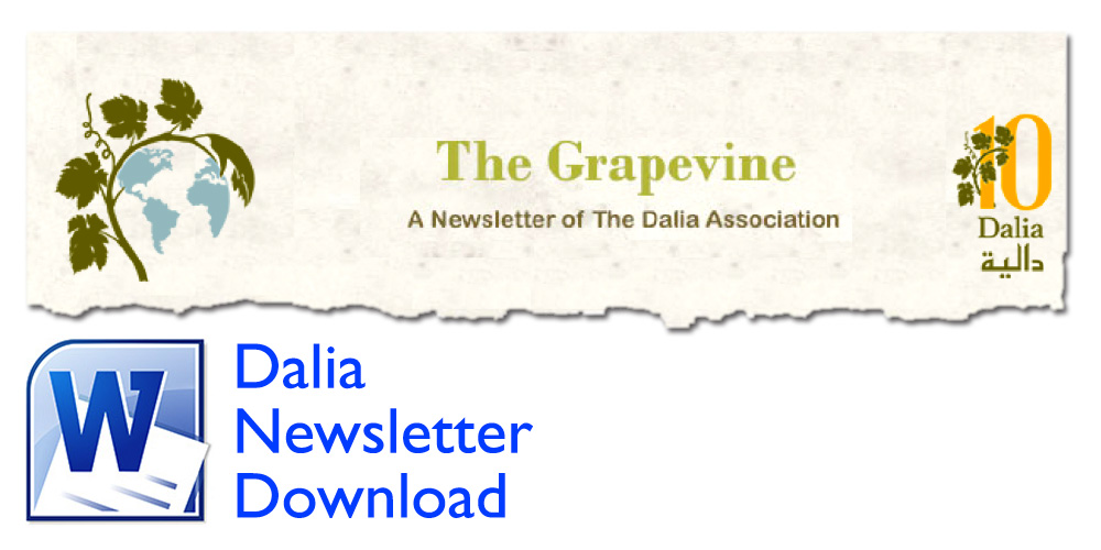 dalia newsletter thumb 01